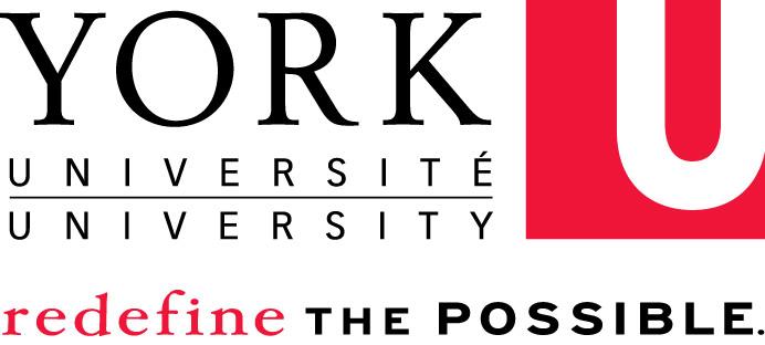 York university international strategy